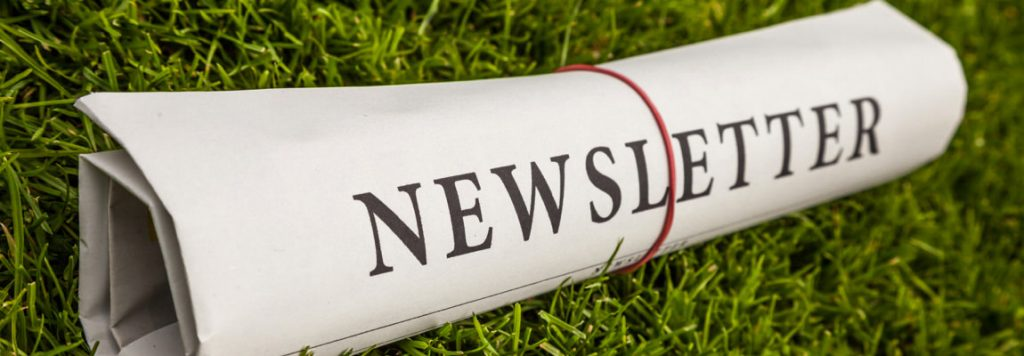 newsletter-por-e-mail
