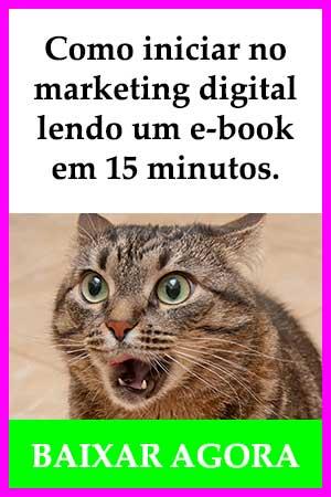 Como iniciar no marketing digital  lendo um e-book em 10 minutos