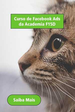 Curso Facebook Ads da Academia F15D